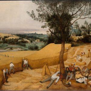 Pieter Bruegel the Elder: The Harvesters