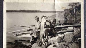 Jättegädda i skärgården på 1940-talet