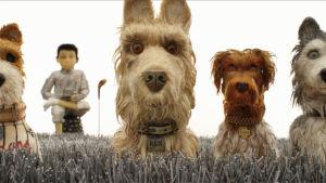 isle of dogs leffan kuva