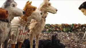 ISle of Dogs -animaatioelokuvan kuva