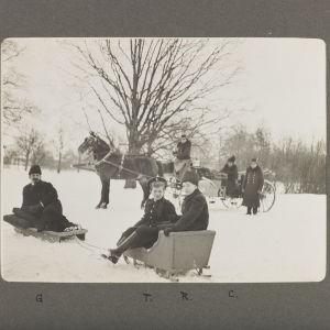 Vintermiljö vid Tsarskoje Selo