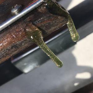 Två gröna slemmiga droppar med prickar i.