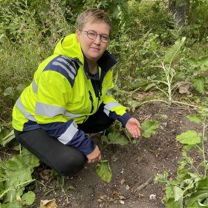 Kaarinan Kuusiston piispanlinnan raunioalueella on kaivettu kuoppia, kertoo Hilja Palviainen.