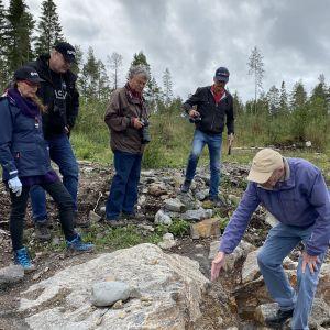 Fem personer står och tittar på en berggrund.