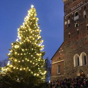 Julgranen vid Åbo domkyrka.