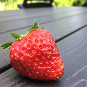 En stor jordgubbe i  närbild.