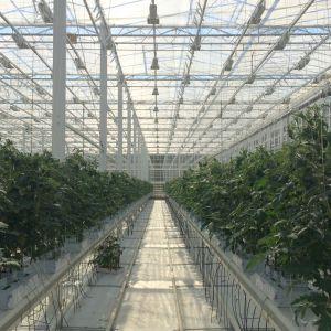 Isakssons växthus i Korpo.