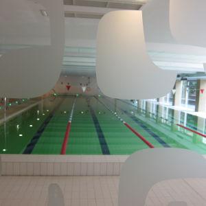 Englantilaisen koulun urheilutalo, uima-allas, Tallinna