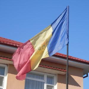 Den moldaviska flaggan