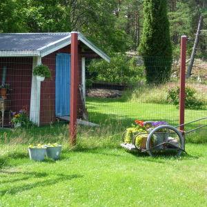 en trädgård med blommor, mjölkkärra och förråd