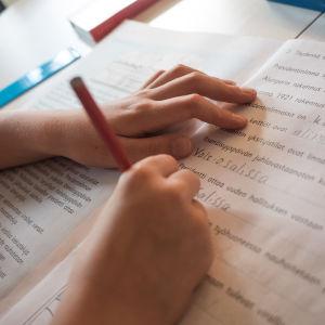 Skolelev gör sina läxor.