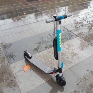 En sparkcykel på en regnig trottoar.