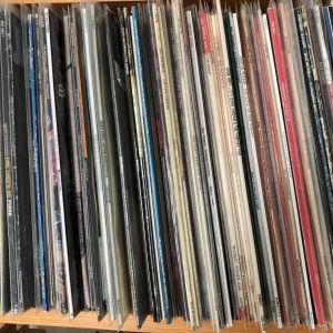 hylla med vinylskivor