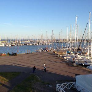Fullt med master på segelbåtar i Hangö södra hamn.