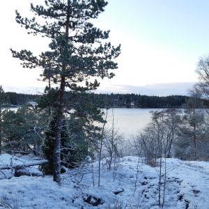 En utsiktsplats över vatten i Bergvalla.