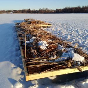 Vesilintujen pesintälautta rakennettiin Tampereen Iidesjärvelle talvella.