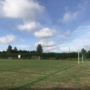 Elimäen jalkapallokenttä, nurmi