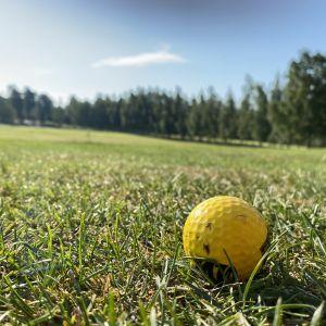 Närbild på en gul golfboll på gräsmatta.