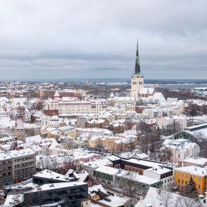 Kaupunkinäkymä ylhäältä, Tallinnan vanha kaupunki, Toompean linna