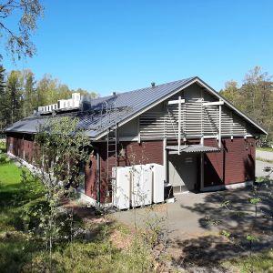 Byggnad med träpanel i lummig miljö.