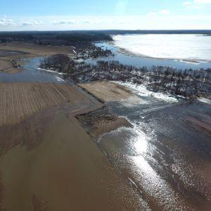 Ilmakuva pelloista ja järvestä, jonka vesi on tulvinut pellolle.