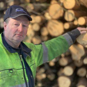 En man i gula arbetskläder står och håller i virke i en hög.