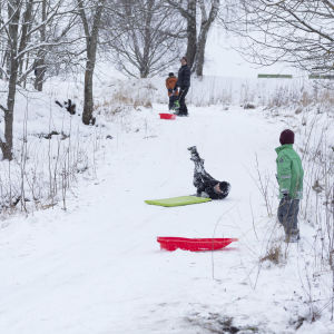 Barn i pulkabacken. Ett barn har fallit av sin gröna pulka mitt i backen och andra barn klädda i färgglada kläder tittar på. Det är snöigt på bilden.