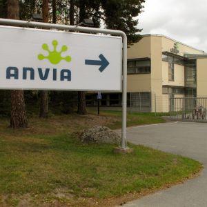 Anvia
