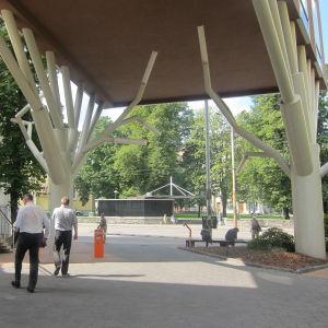 Englantilaisen koulun urheilutalo, koulu puun alla