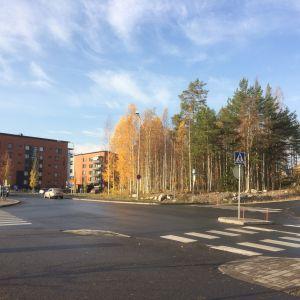 Syksyinen näkymä Kanavaharjunkadulle Kuopion Saaristokaupungissa