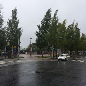 Mikkelin tori Aila-myrskyssä. Puut taipuvat tuulessa.