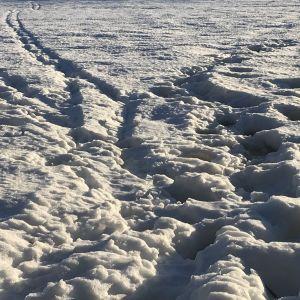 Jalanjälkiä ja omatekoinen hiihtolatu jäällä