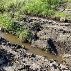 Rankkojen sateiden jälkeinen märkä ja mutainen pelto lähikuvassa.