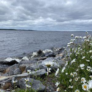 Tuulinen Näsijärvi Vieno-myrskyn aikaan.