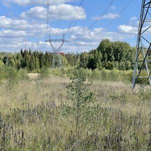Iso sähkölinja halkoo viljelemätöntä peltoa. Pellon reunan takana metsässä näkyy korkea teollisuusrakennus.