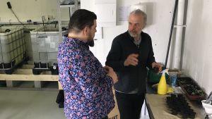Två män diskuterar intill några odlingskrukor i en källare.