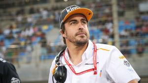 Fernando Alonso blickar upp mot läktaren