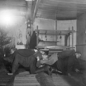 """Fyra män leker """"tämja stutar"""", som är en slags dragkamp. Bilden är tagen 1935 i Bromarf."""