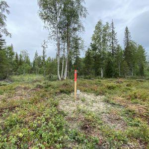 Kaivosyhtiö Anglo American Sakatti Oy:n kairausreikä Viiankiaavan Natura-alueella Sodankylässä elokuussa 2021.