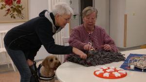 Anna-Lisa Schuvalow gömmer godis för vårdhunden Cooper under ledning av hundföraren Annika Alopeus