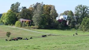 Pargas gård i Raseborg