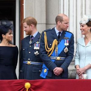 Meghan ja Harry katsovat toisiaan. Vieressä William ja Kate katsovat toisiaan.
