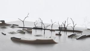 Järvenpään skeittipuisto, havainnekuva