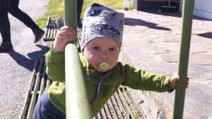Just nu råder det babyboom i Jeppo. Det här är en liten Munsalabo.
