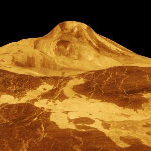 En 3D-bild av Venus yta