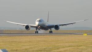 En av flygbolaget Air Indias flygplan av typen Boeing 787 Dreamliner.
