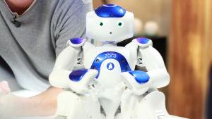 Roboten Zora