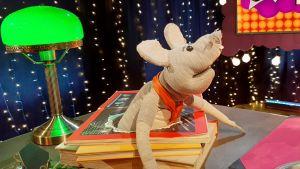 Plåstret är en programledarmus i Svenska Yles barnprogram.
