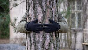 En person står bakom ett träd och håller armarna om stammen.