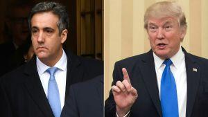 Dubbelbild av Trump och Michael Cohen, båda i blå slips.